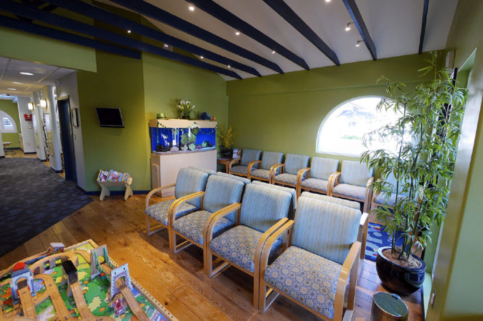 Dr. Barrera's Campbell, CA waiting room makes children at ease as they await their pediatric dentistry appointment.