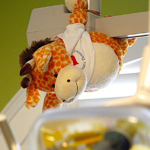 Cute Giraffe Plush Toy Dental Exam Room For Kids - Dr. Barrera Campbell CA Pediatric Dentist
